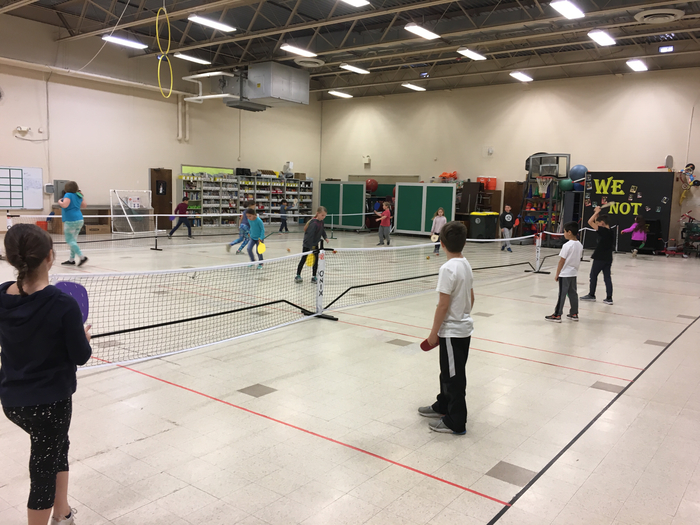 Pickleball Fun