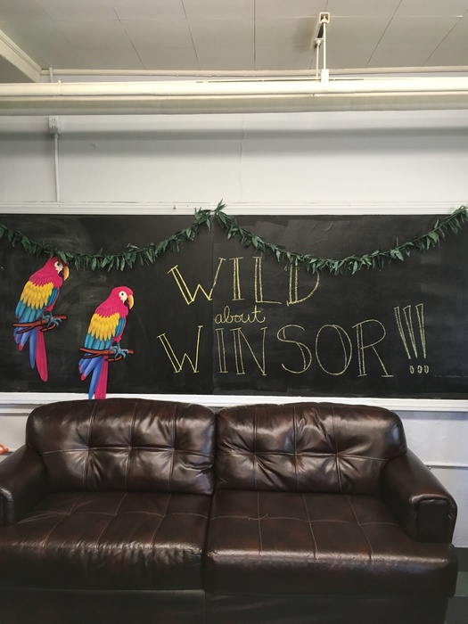 Wild For Winsor
