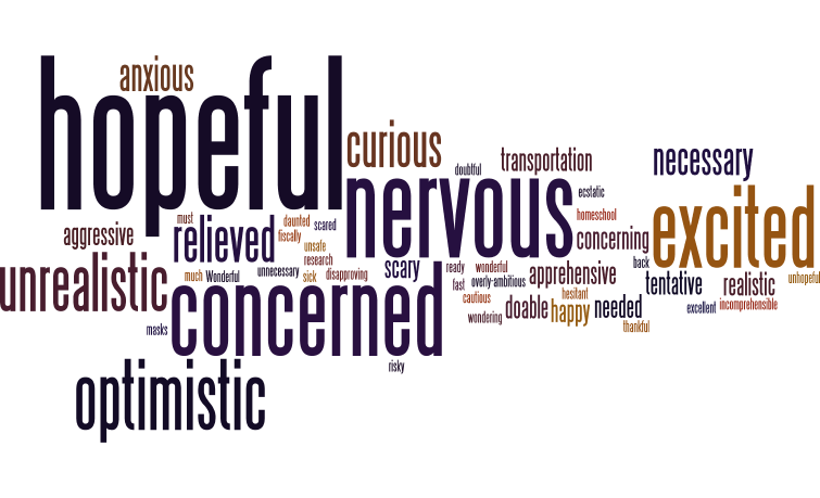 Wordle picture with words, hopeful, nervous, concerned, relieved, unnecessary, scary, curious, etc.
